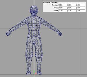 Custom Characters - Wolfire Games Wiki